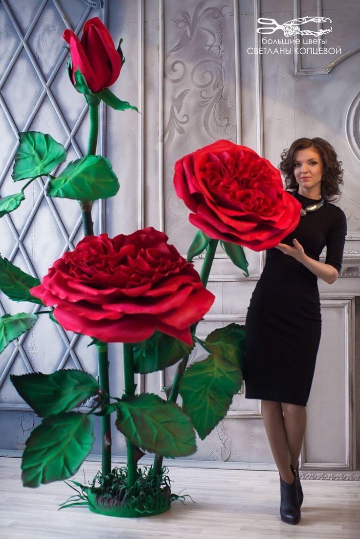 Цветы из бумаги. Цветы из фоамирана. Цветы из изолона. Мастер-классы.