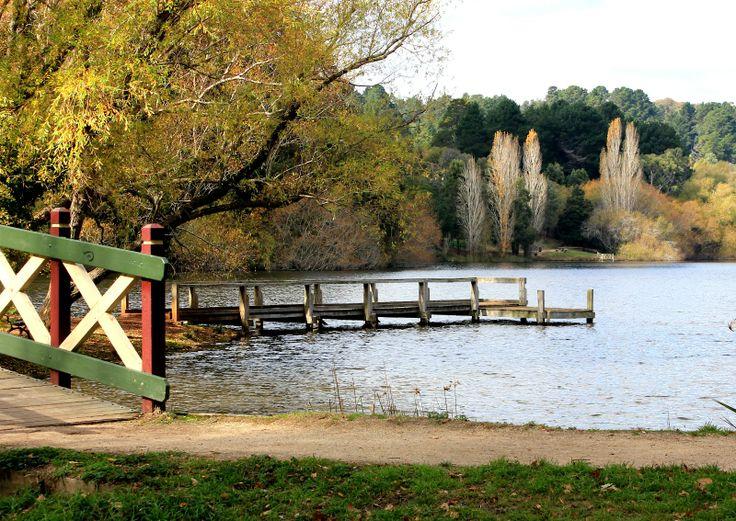 Daylesford Lake in Autumn