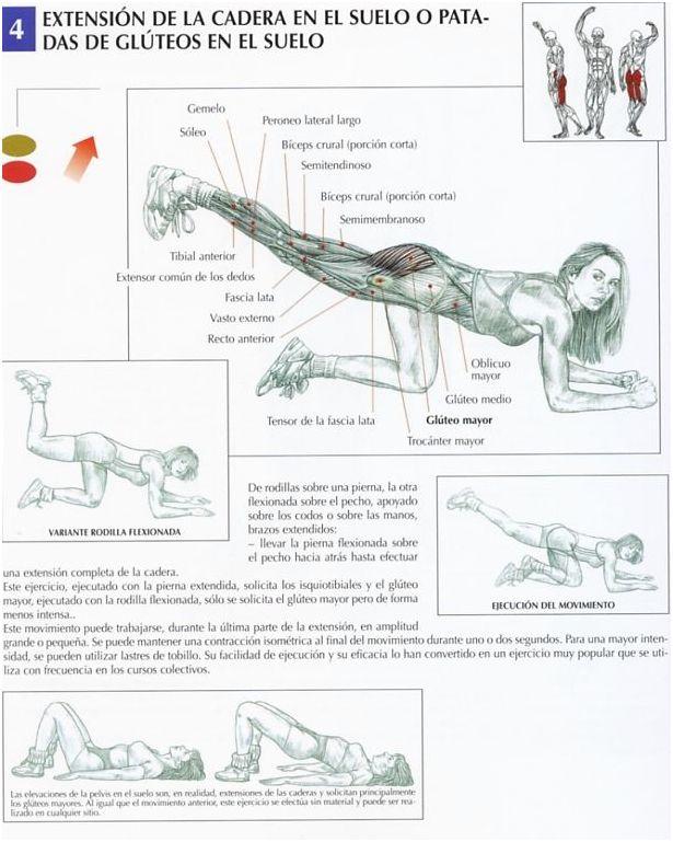 Extensión de la cadera en el suelo o Patadas de glúteos en el suelo - InfoCulturismo.com