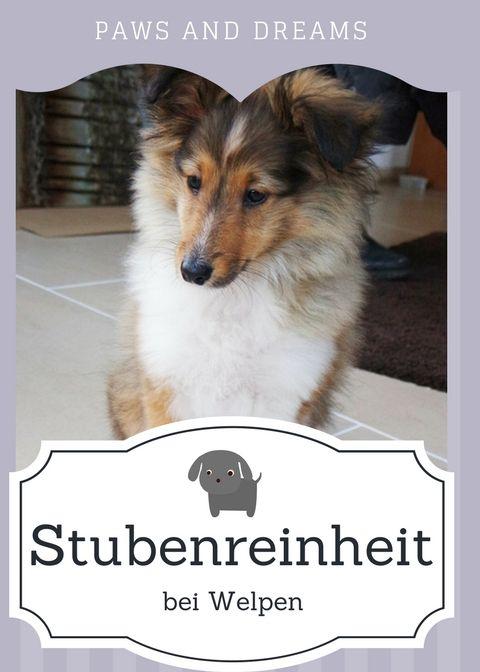 Stubenreinheit-bei-Welpen-Hunden-stubenrein