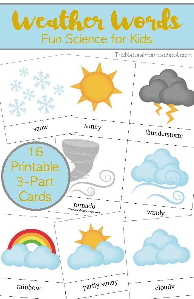 weather words for kids printable 3 part card set - Printable Kids