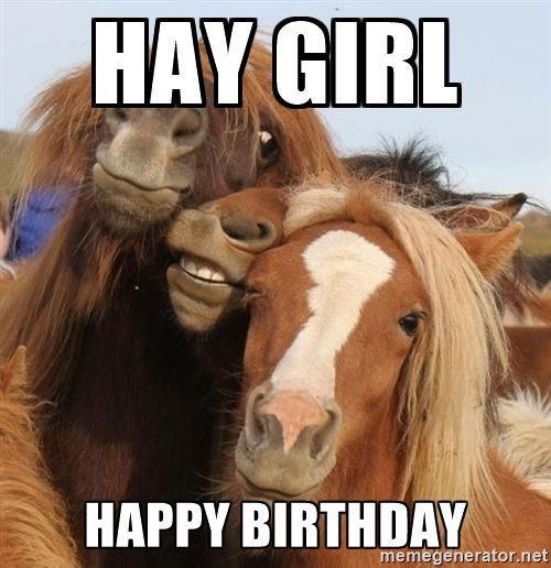 96 Best Images About Birthday Meme's On Pinterest