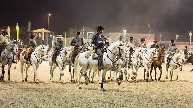 Place: Golegã Feira Nacional do Cavalo - National Horse Fair in Golega, Lisbon Region, #Portugal