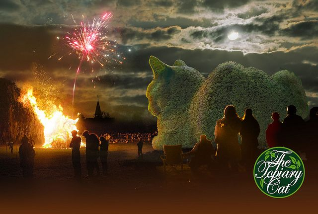 The Topiary Cat enjoying the warmth of the bonfire. Just one of 12 images in The Topiary Cat Calendar for 2017 available from: http://www.vycombe-arts.co.uk/onlineshop/prod_5446334-NEW-Topiary-Cat-2017-Calendar-A-Bushy-Tale-by-Richard-Saunders-Surrealist.html