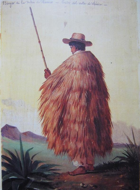Mexican Shepherd