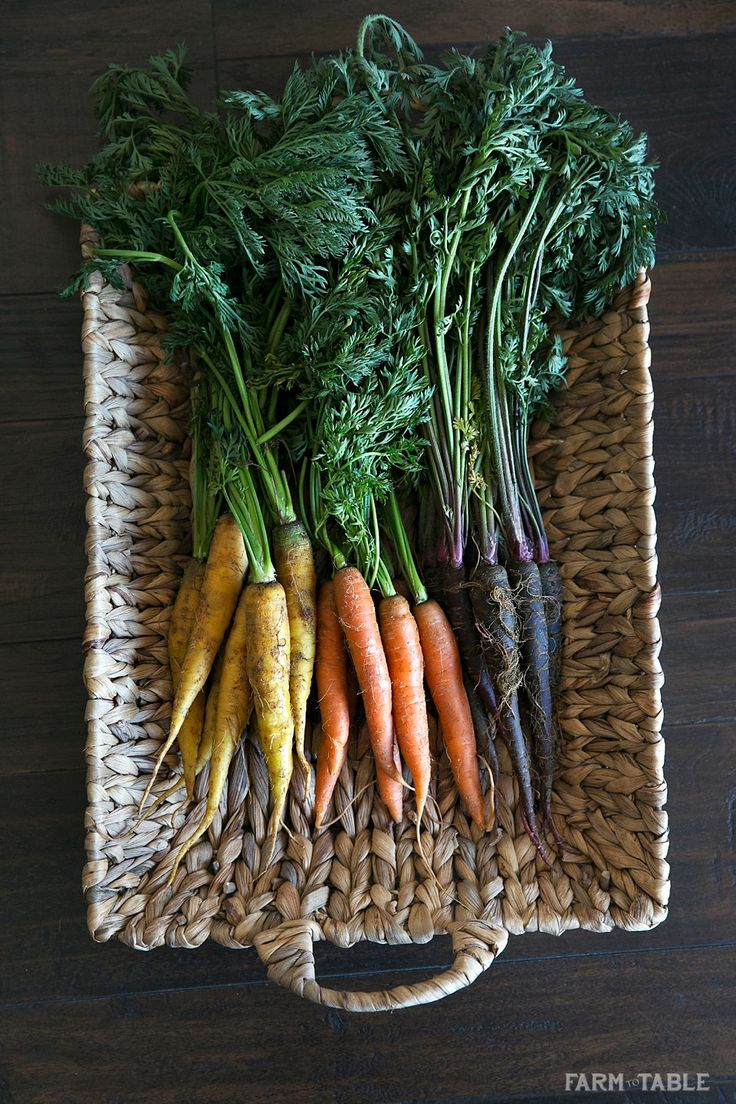 Tricolor Carrots | Purple, Orange _ White Carrots | Honey Glazed Carrots | Farm to Table LA
