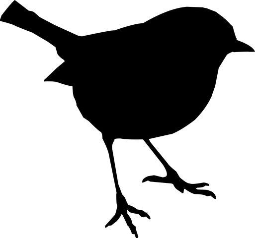 Pták, Stojan, Silueta, Příroda