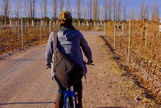 Maipú, Mendoza Province, Maipú, Argentina....biking to wineries!