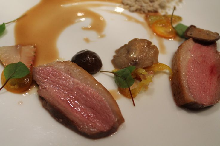"""""""Pond Bird"""" Duck 