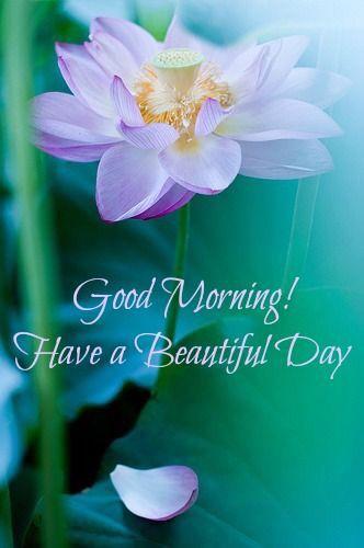Good morning... Beautiful day