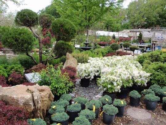17 best images about plant center on pinterest gardens for Garden centre