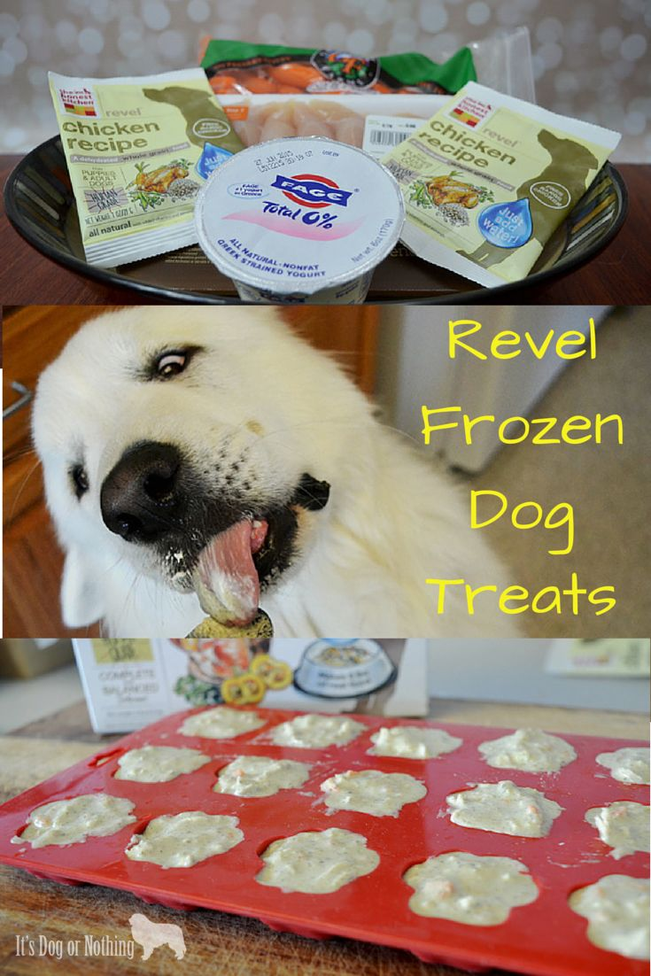 How To Create Frozen Dog Treats Using The New Revel Food From The Honest  Kitchen.