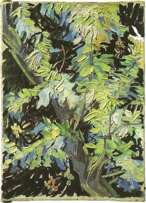 Vincent van Gogh: The Paintings (Blossoming Acacia Branches). July 1890. Stockholm - The National Museum.