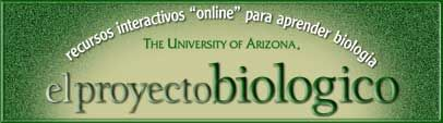 El Proyecto Biologico - Biologia human, biologia molecular, genetica mendeliana y mas   #recursos #educativos #ciencias