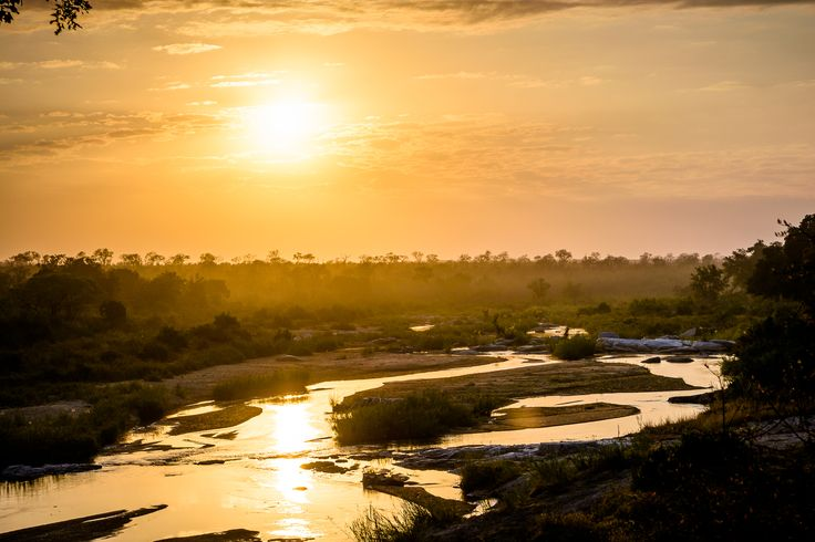 Singita Sabi Sand is a privately owned game reserve in the Sabi Reserve, adjacent to the Kruger National Park in South Africa. Spanning more than 45,000 acres,