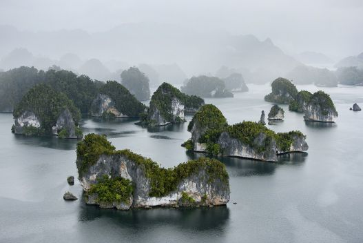 Raja Ampat Islands: Waigeo Island, Indonesia