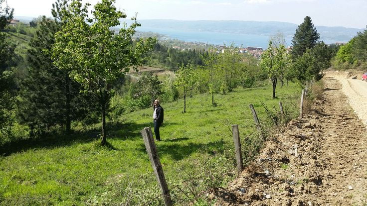 Price: 1.050.000 TL Project:HACI MERCAN SARP DERE  Type:Planned - Residental  Type:Land   Category:For SaleCity:SAKARYA   State:SAPANCA   Parcel:194   Pafta:4  Status:Sale  Area:8750,00  M2 Price:120  State :HACIMERCAN  Deed:Detached Land  Heating:No  Construction:Housing  Credit:Yes
