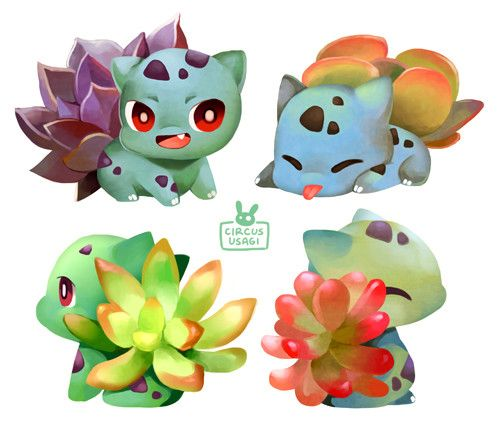 ArtStation - bulbasaurs and succulents , Jia-ying Ong                                                                                                                                                                                 More