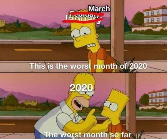 Fourteen Memes About How Comically Horrible 2020 Has Been So Far Funny Memes Humor Stupid Memes