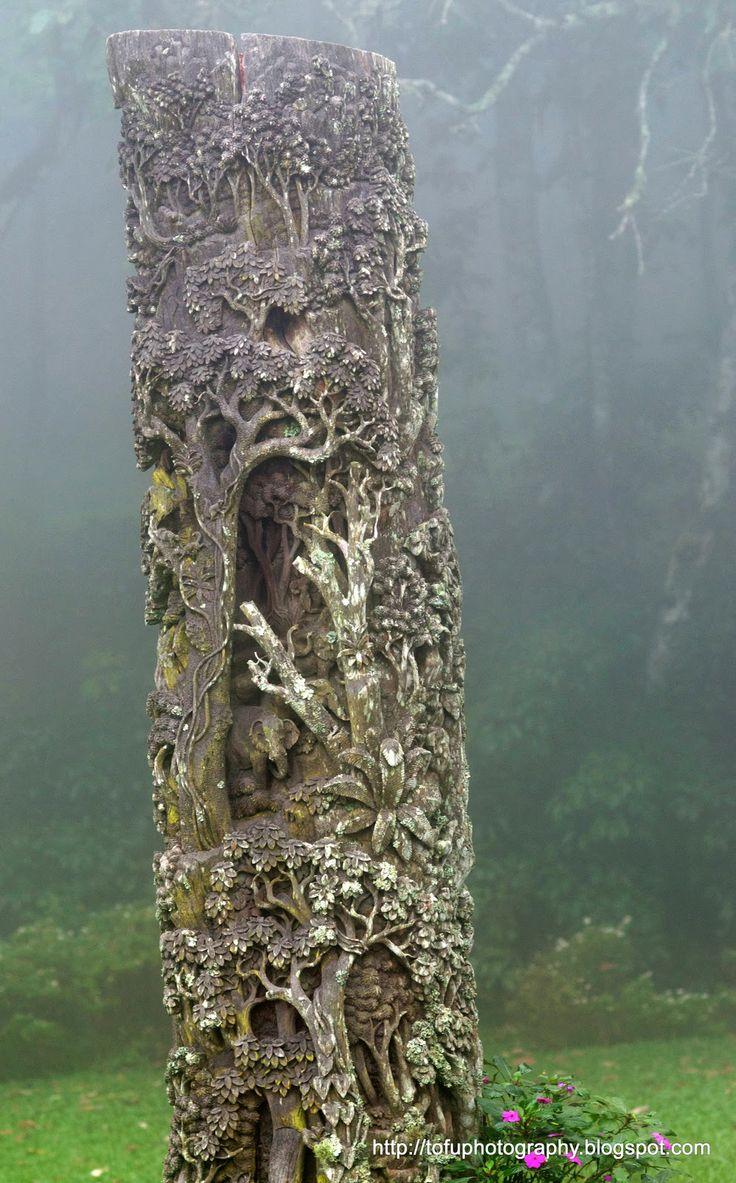 Best carved trees images on pinterest