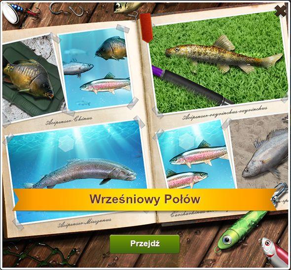 Wrześniowy Połów http://naryby2.fansite.xaa.pl/watek-1449.html #naryby #letsfish
