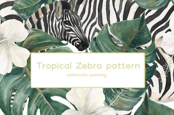 Tropical Zebra patterns by ramika on @creativemarket