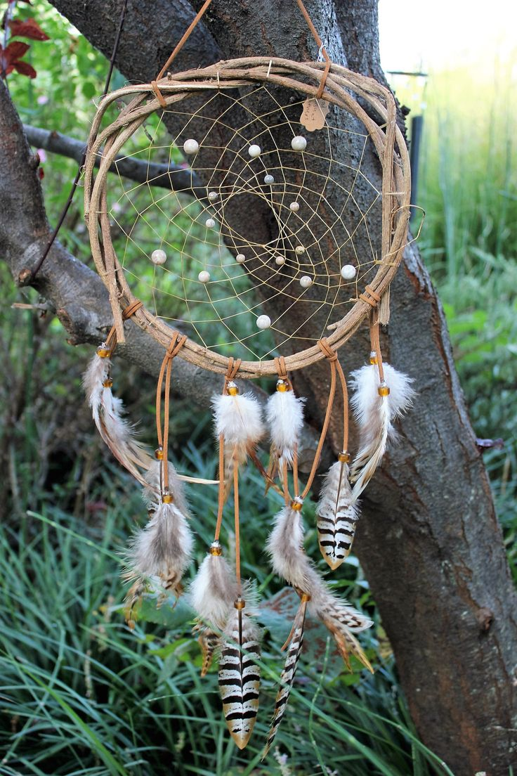 Fossilized Coral Wisteria Vine Dream Catcher, 10 inch, Leather, Sinew, and Pheasant Feathers