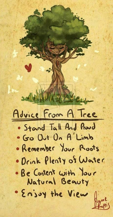 Advice from a tree: Stand tall and proud. Go out on a Limb. Remember your roots. Drink plenty of water. Be content with your natural beauty. Enjoy the view.