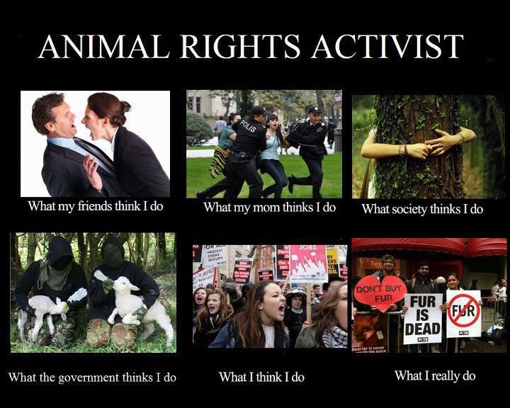 Animal Rights Activist | What I Think I Do | Pinterest ...