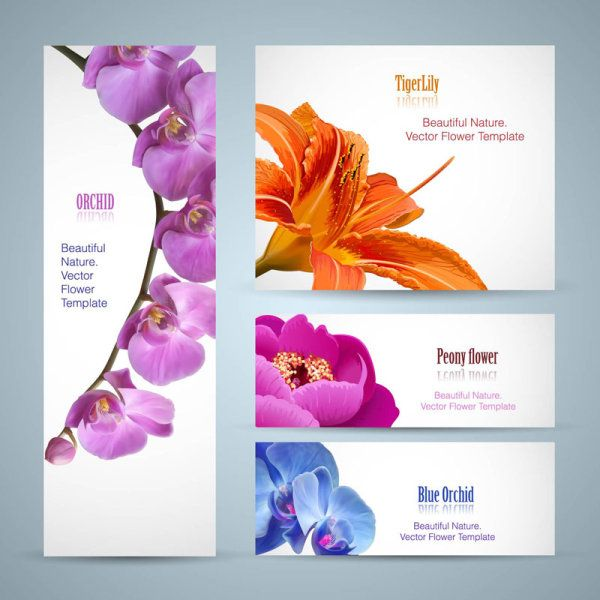 Vivid with flower banner design vector 01