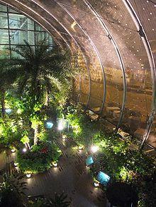 Butterfly Garden inside Terminal 3, Singapore Changi Airport - Wikipedia, the free encyclopedia