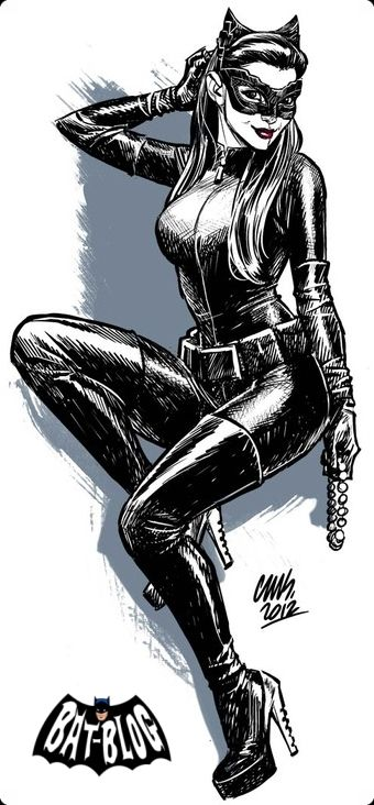 THE DARK KNIGHT RISES CATWOMAN PIN-UP ART By Cameron Stewart