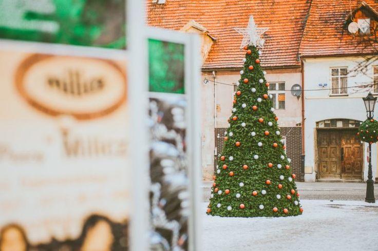 Świąteczne nakładki na kwietniki – jak to działa? | Inspirowani Naturą | Christmas Covers on the Flower Constructions how does it work?