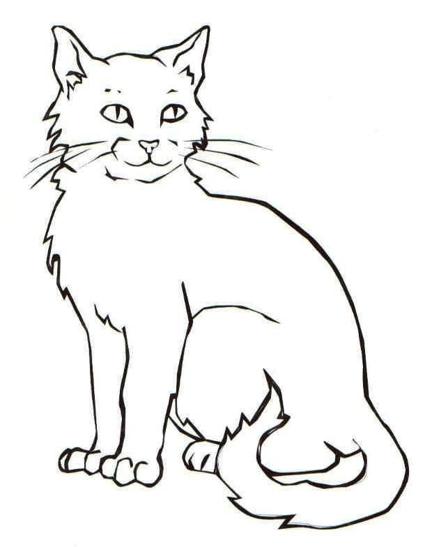 Pete The Cat Coloring Page Cat Printable Coloring Pages Of A Cat Cat Coloring Book Cat Coloring Page Realistic Cat Drawing