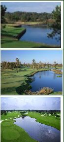 Golf vacation packages in New Orleans will allow you to enjoy the exciting life of the city. Bigeasygolf.com provides golf courses and golf vacation package.