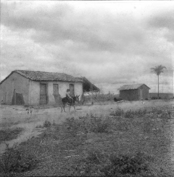 Fazenda Em Irece Ba Fev 1962 Com Imagens Bahia
