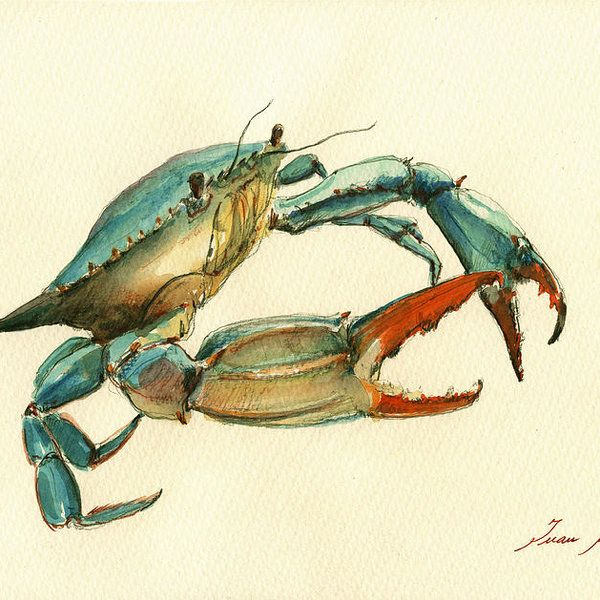 Blue Crab Art Print featuring the painting Blue Crab Painting by Juan Bosco