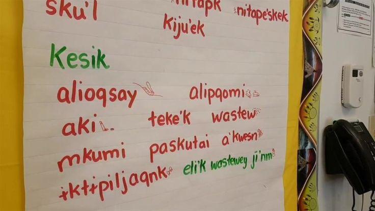 Mi'kmaq leader seeks official language designation in Nova Scotia