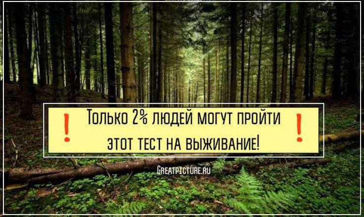 Это довольно сложный тест, и далеко не каждому удается его пройти. 98% людей терпят поражение при его прохождении! Возможно вы особенный человек, и именно