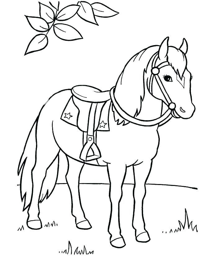 Cartoon Horse Coloring Page Youngandtae Com In 2020 Horse Coloring Books Horse Coloring Pages Horse Coloring