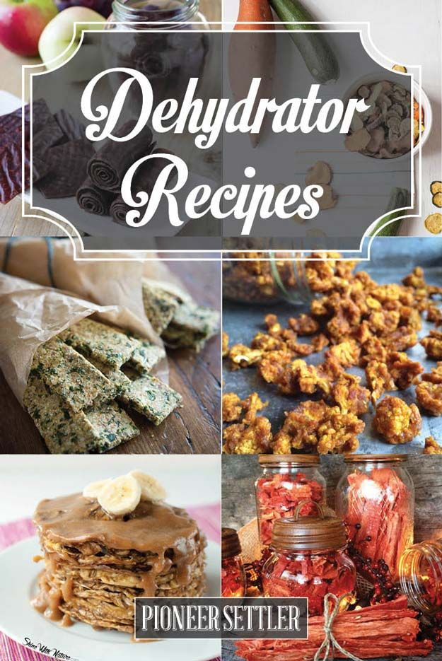 Dehydrator Recipes Healthy Snacks That Last! by Pioneer Settler at http://pioneersettler.com/dehydrator-recipes/