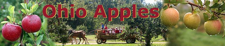Ohio Apples- Resources for Educators