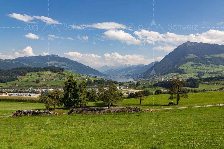 Blick auf #Rigi und #Zugersee im Kanton #Zug in der Schweiz (Switzerland)