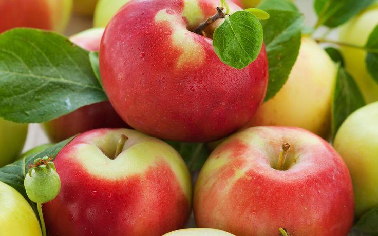 recept verse appelmoes met een korstje. - Receptenbundel.nl