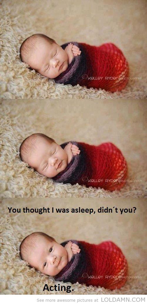 Unbelievably cute.