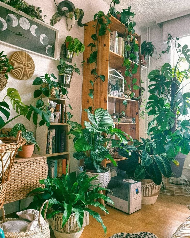 Boho Lifestyle Home Decor Ideas Room With Plants Plant Decor