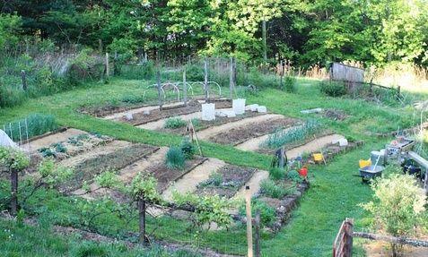 8 Best Vegetable Gardens On A Slope Images On Pinterest