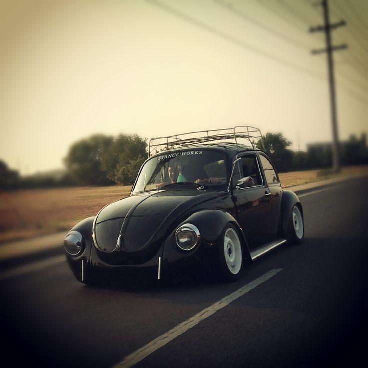 Sweet bug.