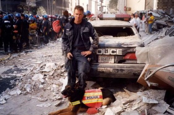 5 of the Most Important Search and Rescue Dogs From 9/11