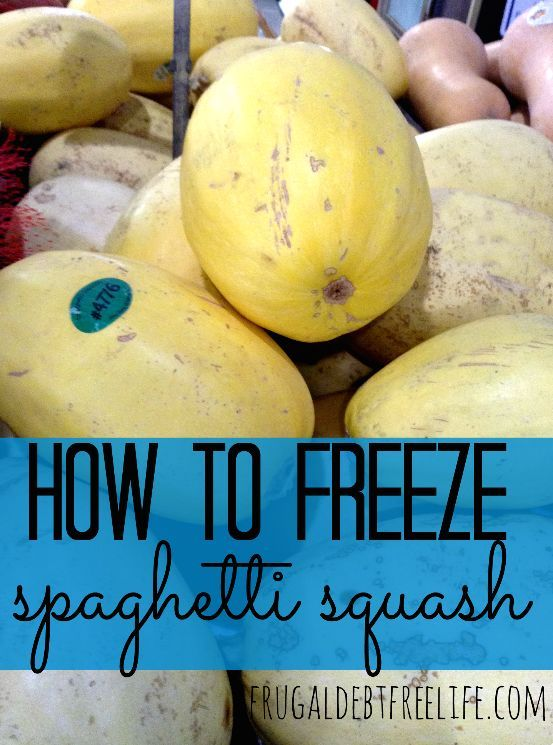 How to freeze spaghetti squash don't waste a bit of that squash. You can freeze it!